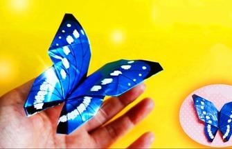 教你折纸闪闪发光的蝴蝶,手艺很赞