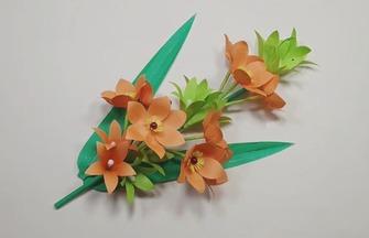 手工纸花作品,如何制作漂亮的晚香玉